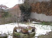Gartenstart Dezember 2009
