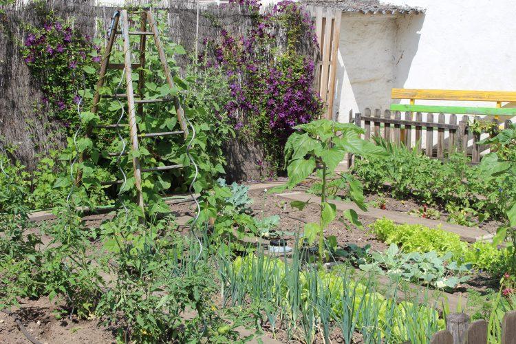 Urlaub und Garten...